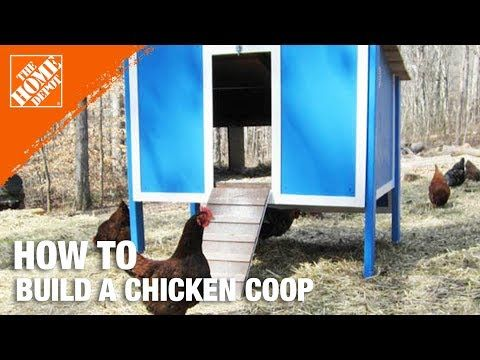 How To Build a Chicken Coop Part 1