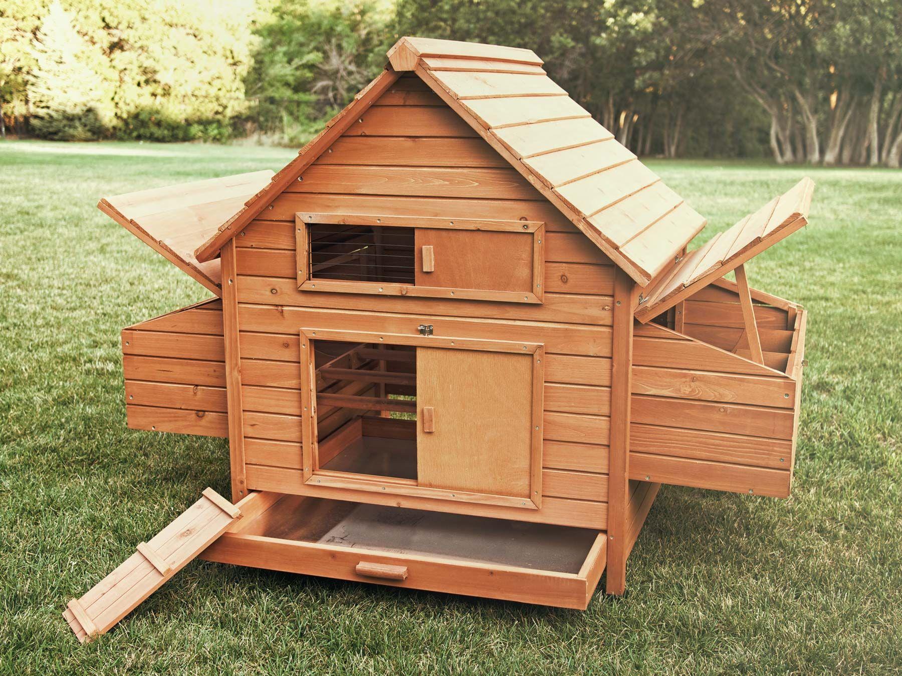 Rambler Chicken Coop Chicken Saloon Chicken Saloon Chickens Backyard Building A Chicken Coop Backyard Chicken Farming