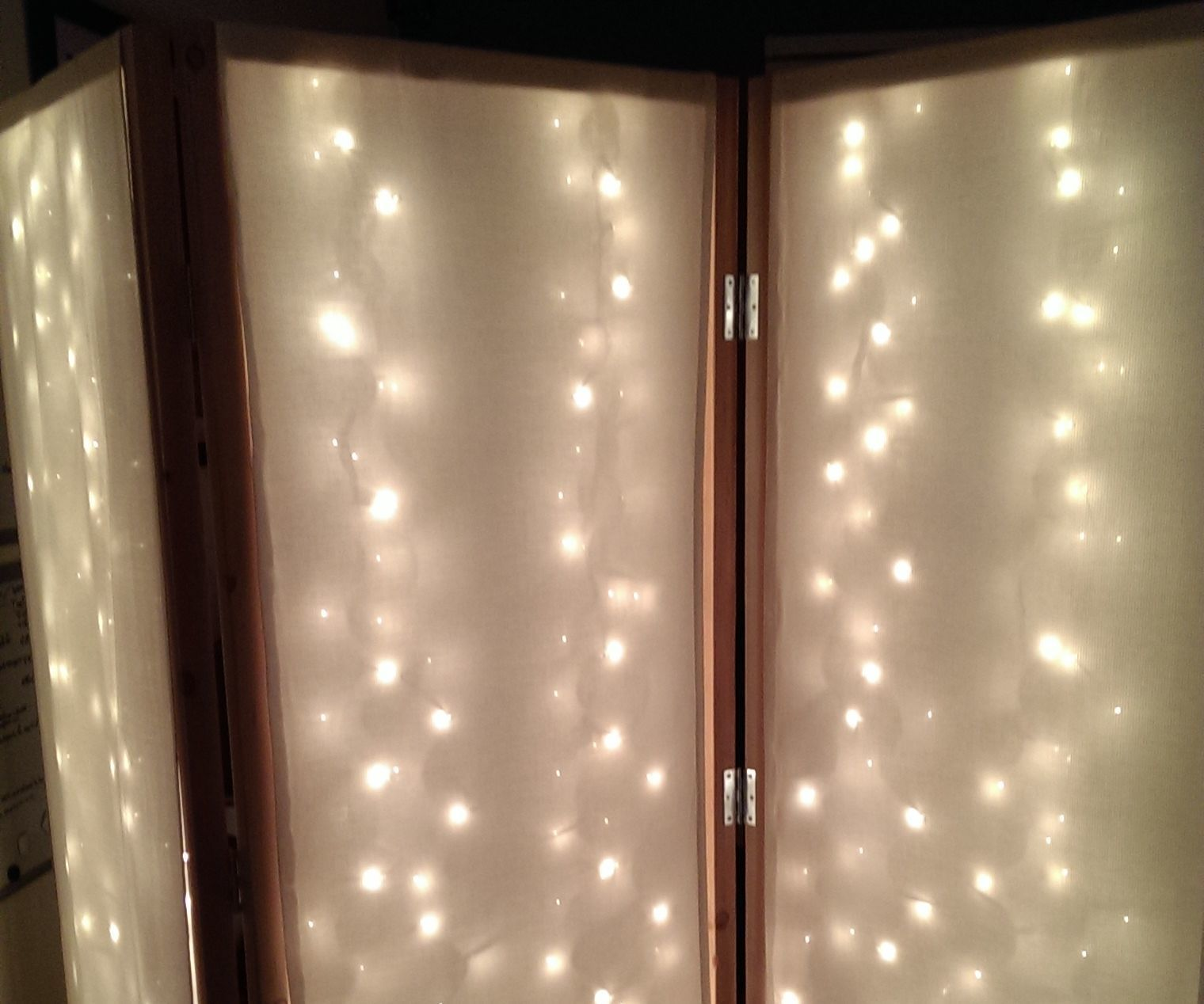 Lighted Room Divider Privacy Screen