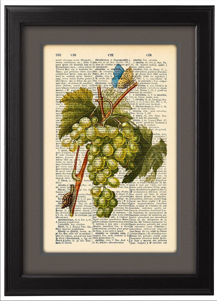 White grape with butterfly and snail, Fruit Dining Room Kitchen Home ...