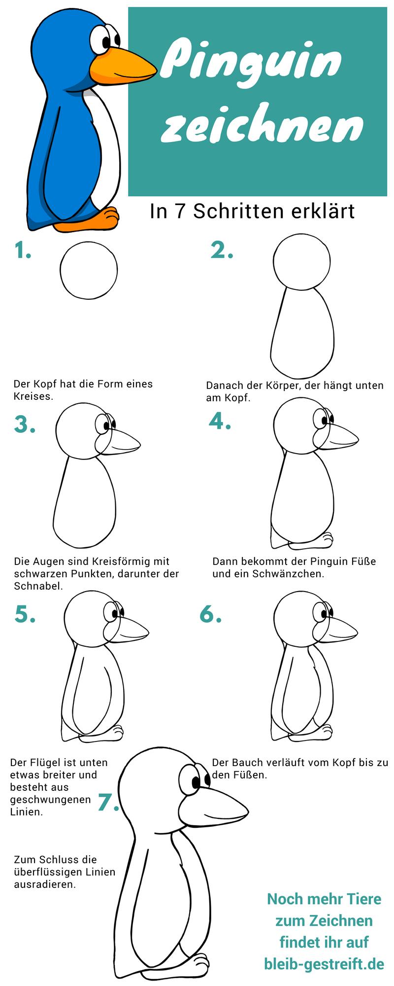 Pinguin zeichnen lernen | Pinguin zeichnen, Pinguin malen ...