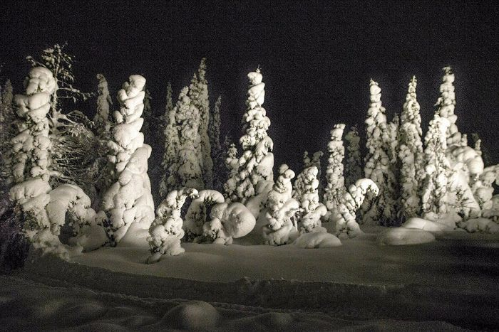 Lapland Offline - This is a holiday where you have full focus to yourself, nature and wellbeing. No Phone. No Laptop. No iPad. (Only camera allowed.)