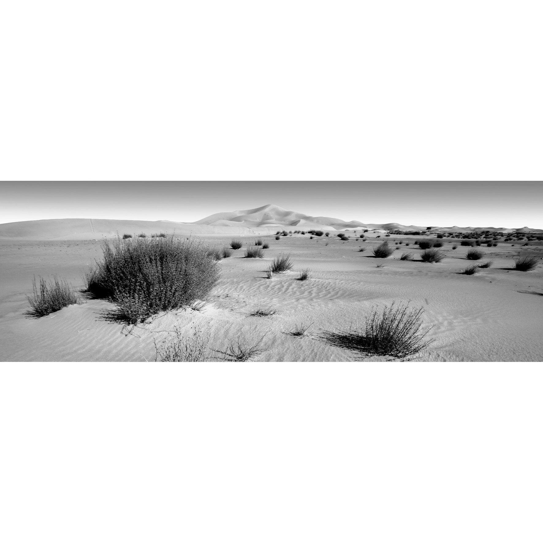 Toile Imprimee Desert 2 N B Multicolore Artis L 135 X H 45 Cm Verre Imprime Noir Et Blanc Et Toile Imprimee