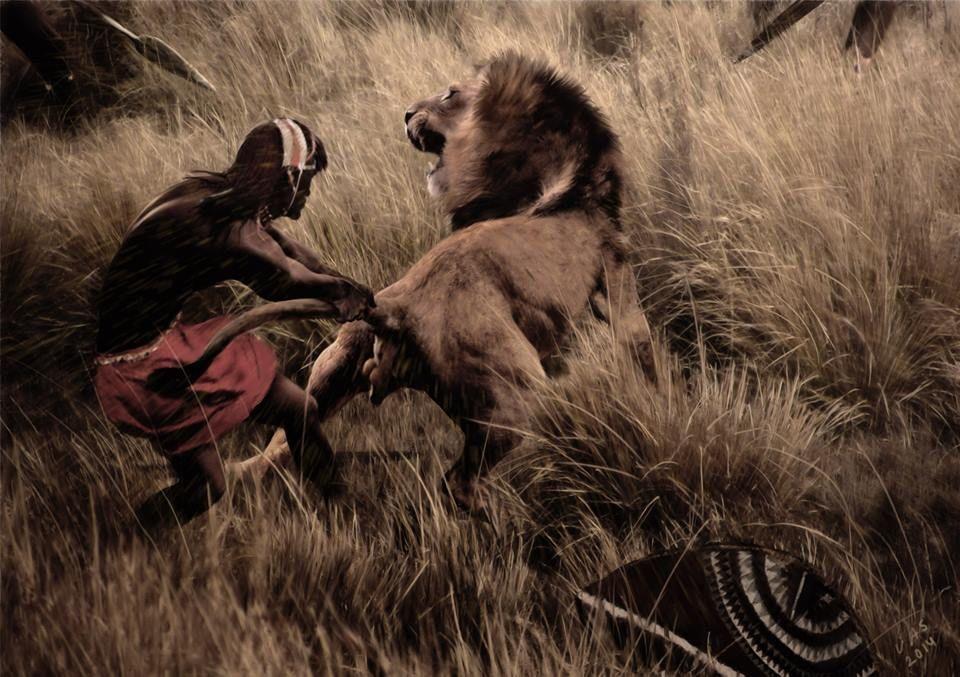 ХХ век, Кения. Молодой воин масаи демонстрирует храбрость, схватив за хвост льва во время охоты.
