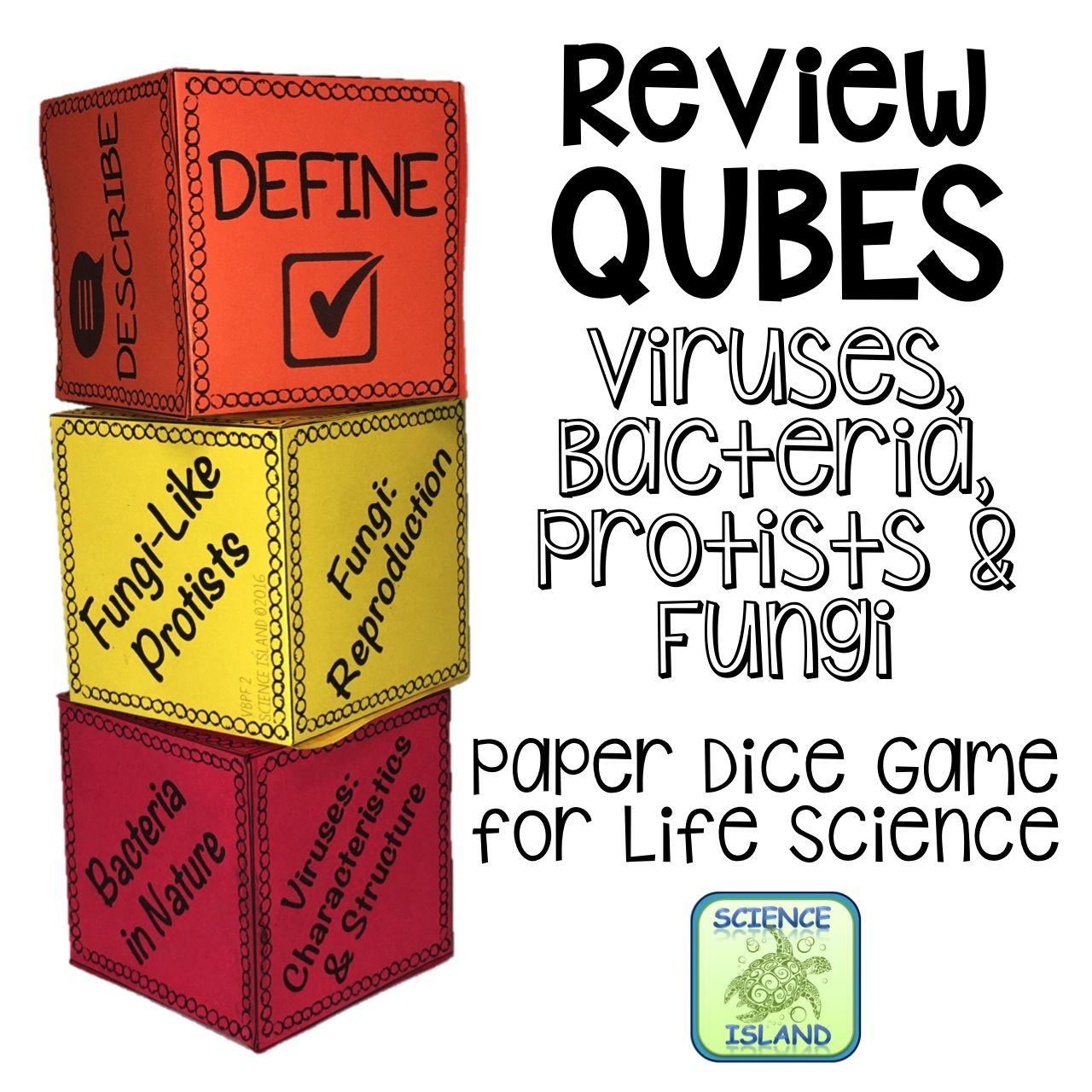 Viruses Bacteria Protists Amp Fungi Review Qubes