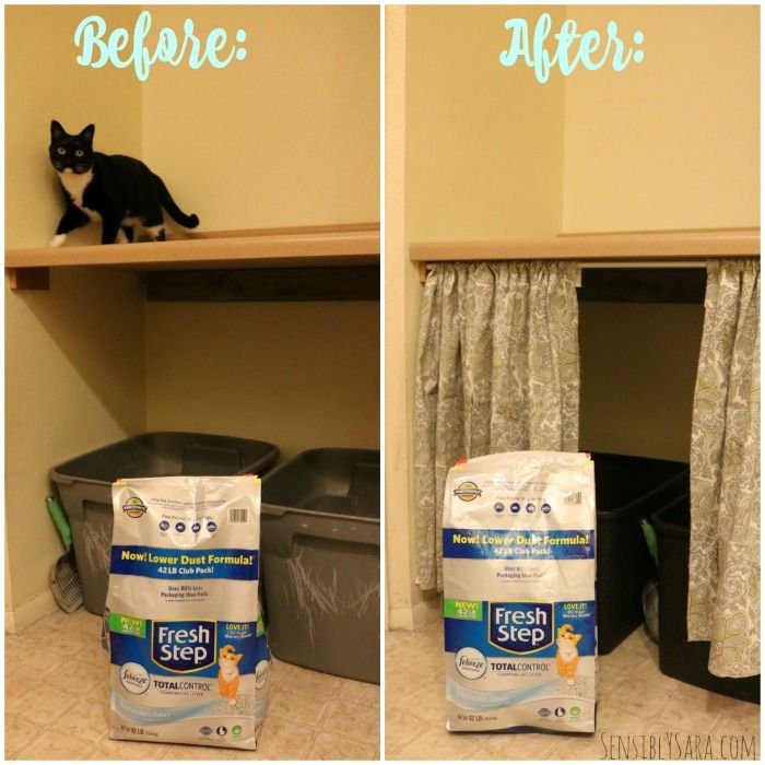 Diy No Sew Cat Litter Box Curtain Ad Yougottabekittenme Cat