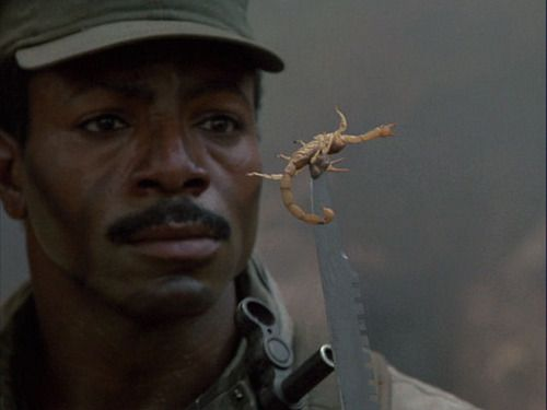 10 eighties action stars who are now total nobodies