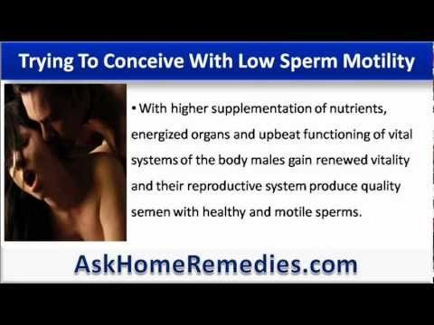 chances of conceiving with low sperm