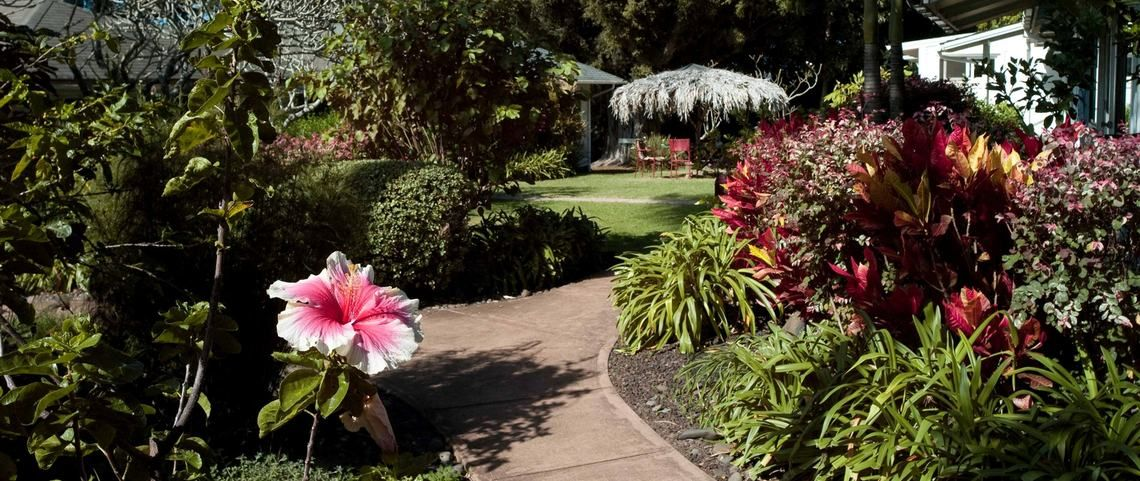 The beautiful surroundings/land... Maui, Retreat, Bed