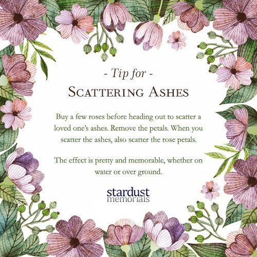 Http Www Stardust Memorials Com Funeral Planning Funeral