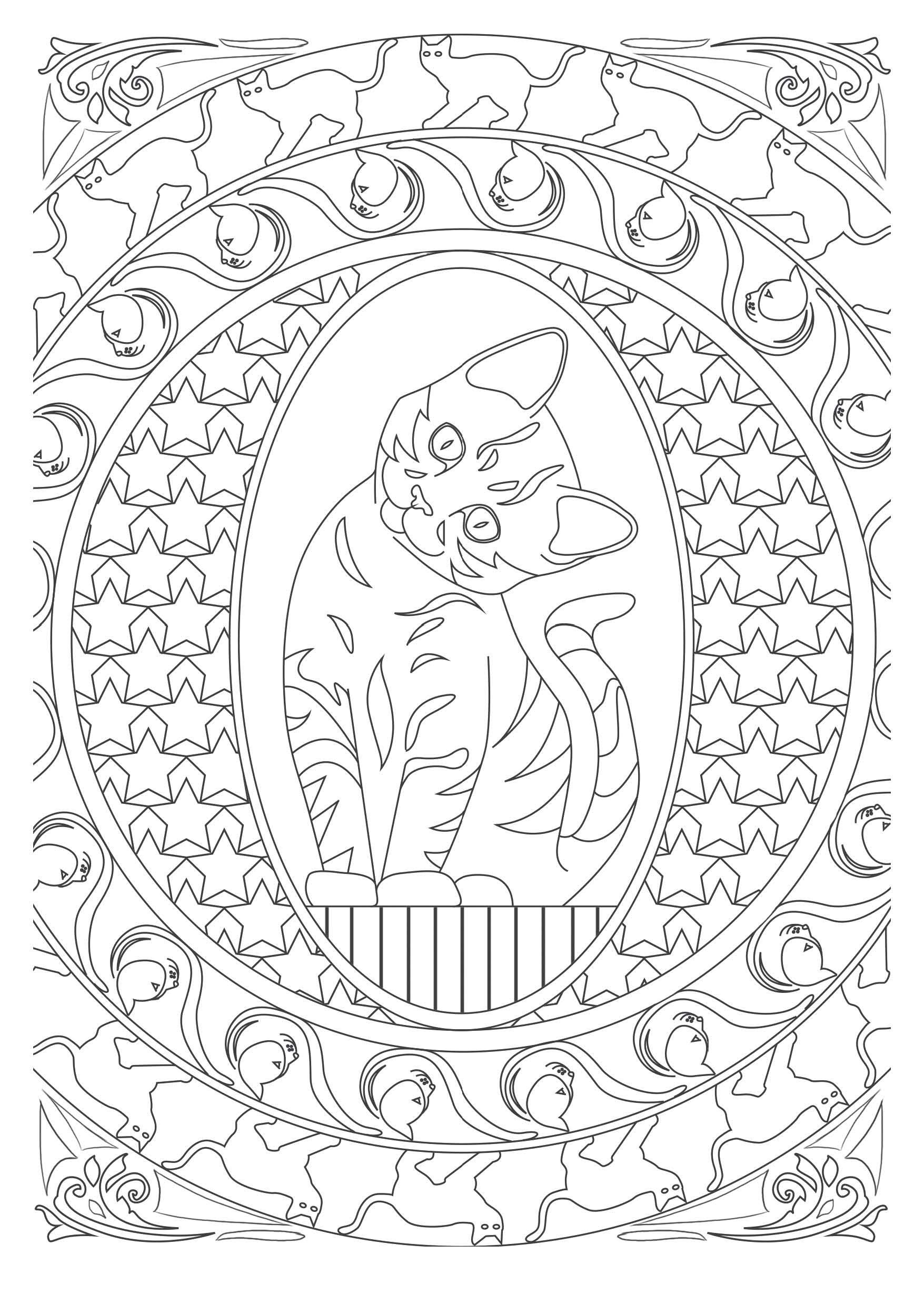 Chat thérapie : 100 coloriages anti-stress: Amazon.de: Vincent ...