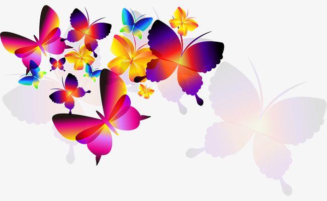 حلم الفراشة الملونة Colorful Butterflies Butterfly Wallpaper