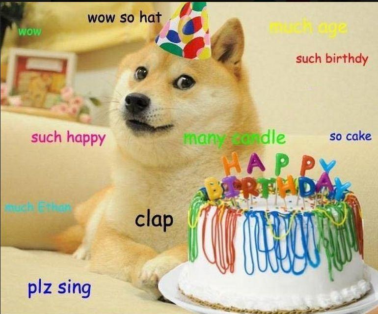 267938594914c8621b44fdbce79d8900 for mai birthday juicing humor pinterest doge, birthdays and,Birthday Meme Animal