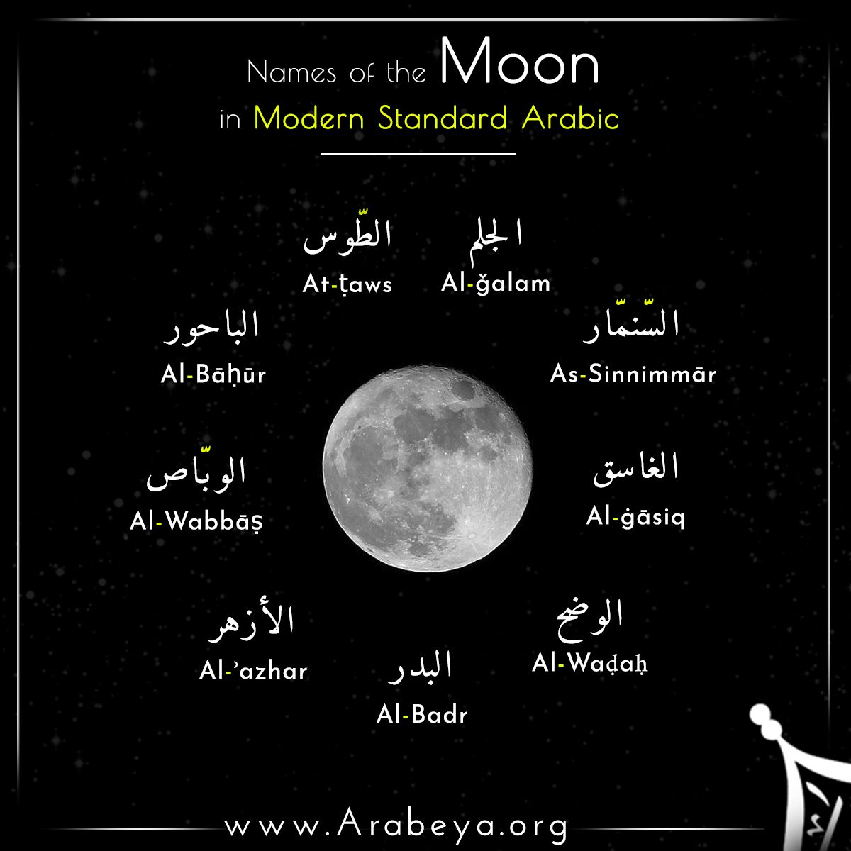 Pin On Names Of In Modern Standard Arabic