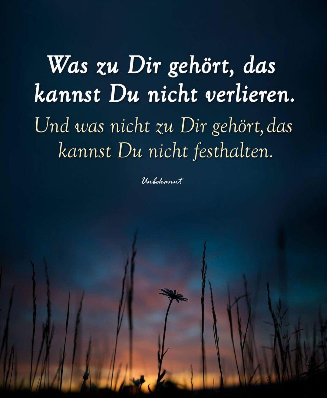 Deutsche Promis Psychologie  C B Weiser Spruch Wahre Spruche Spruch Kuche Grosartige Zitate Weisheiten Zitate Gedichte