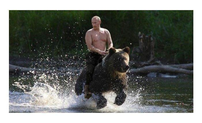 Vladimir Putin riding a bear on the way to America (With ...