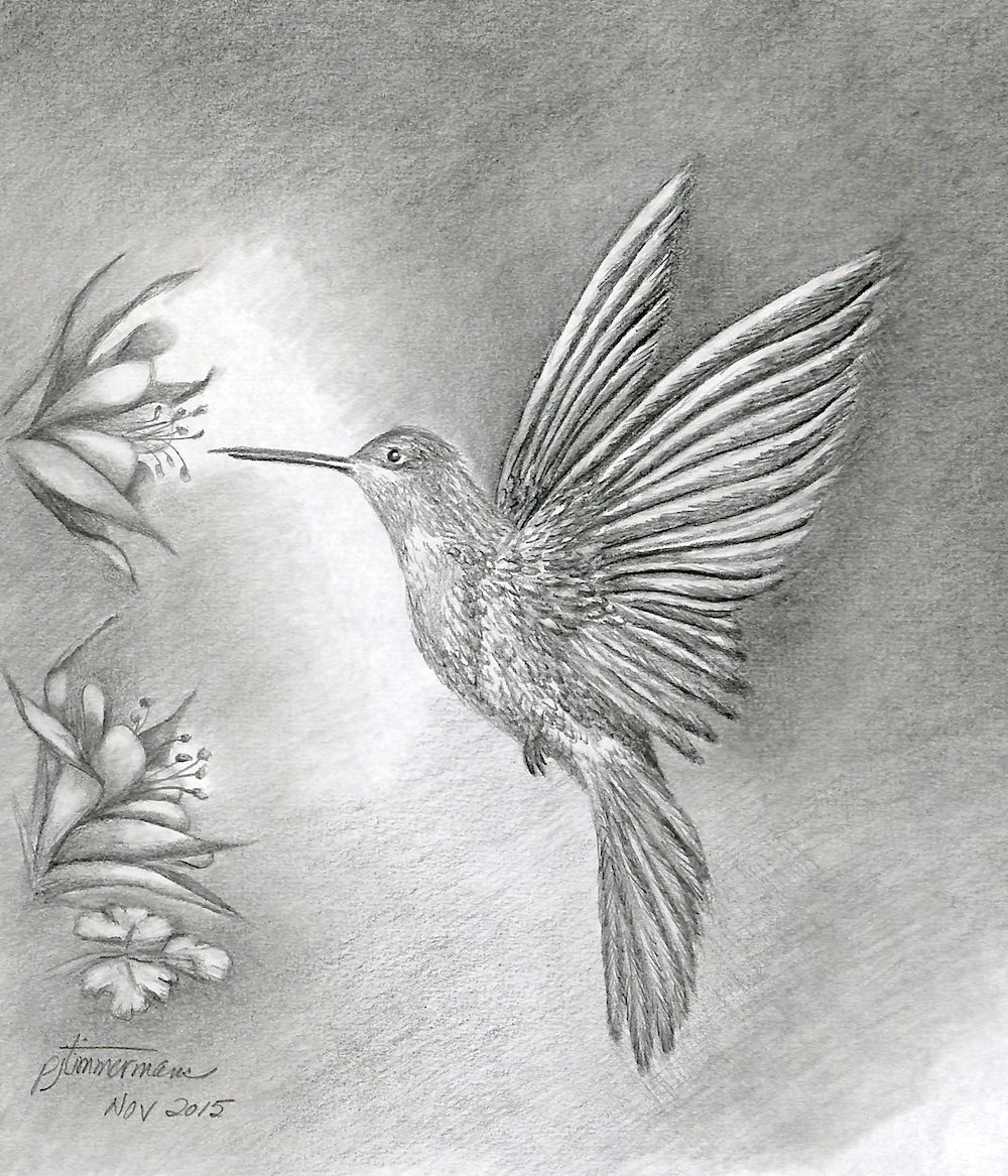 Columbine Flowers And Butterfly Art Makeries In 2019 Bird Drawings