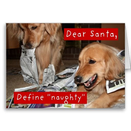 Golden Retriever Define Naughty Christmas Holiday Card Zazzle