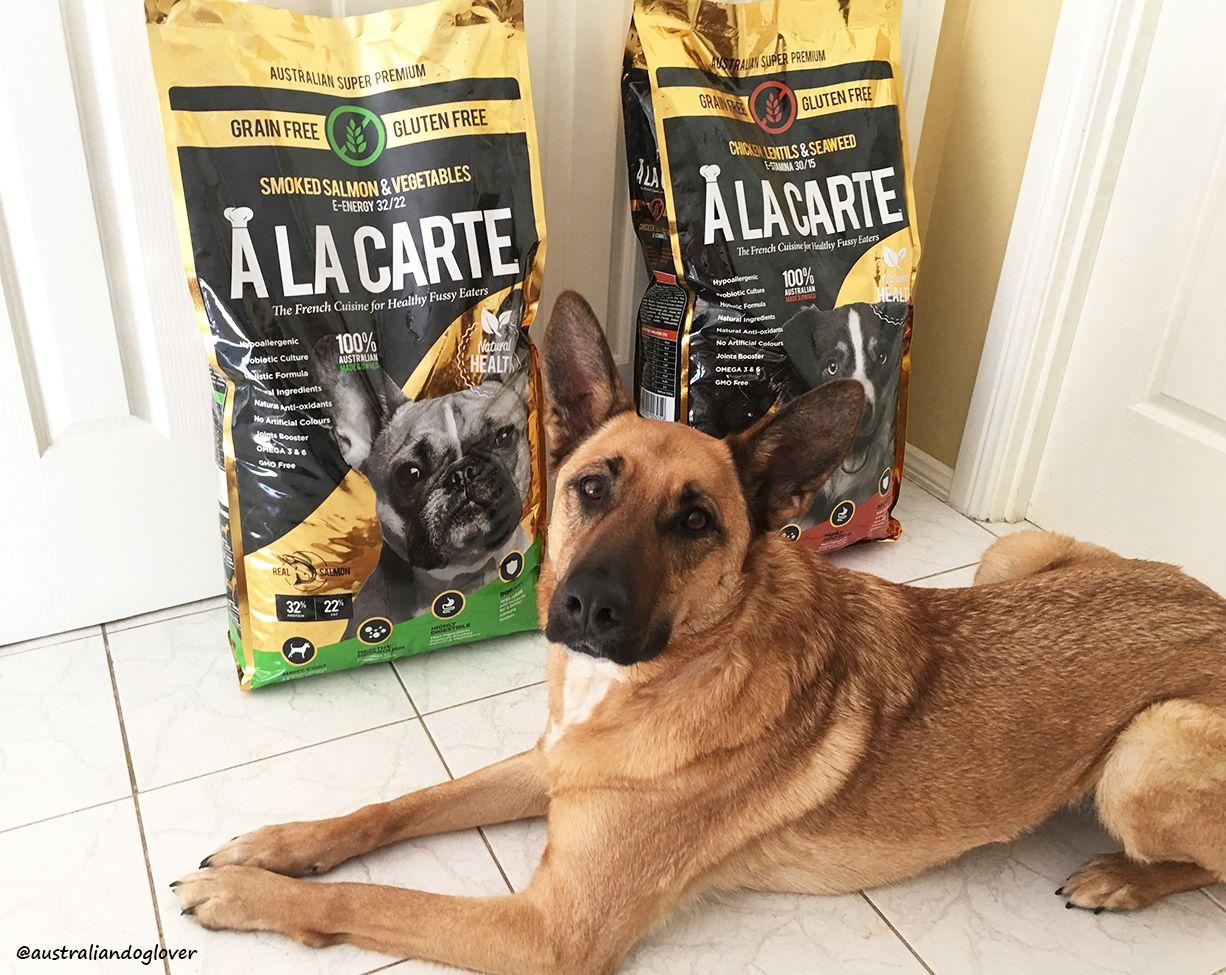 A La Carte GrainFree Dog Food Review Australian Dog