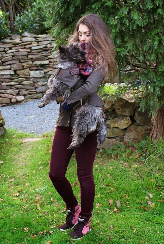 ladies-jacket-cairn-terrier-barbour-melrose-fairisle-scarf-becky ...