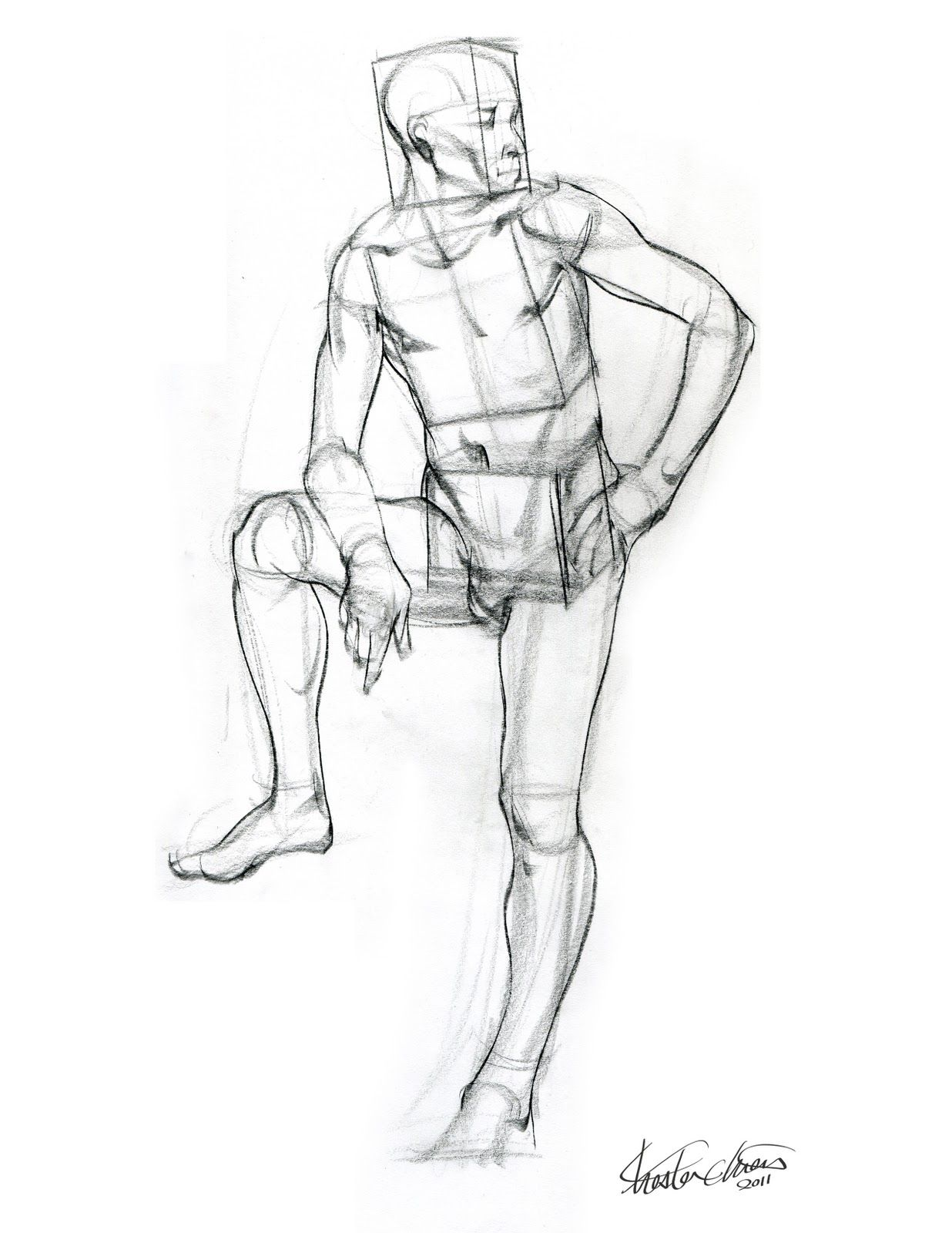 Chester Chien Form Study Drawing Boxes Of Torso