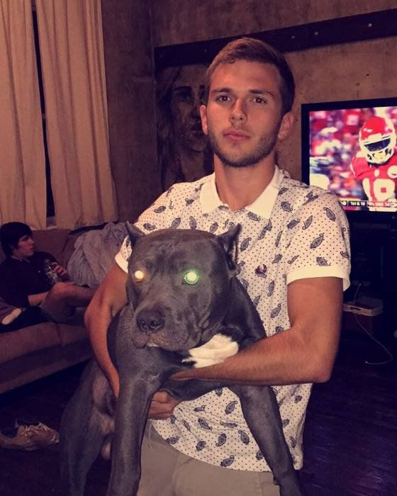 Chase Chrisley Dog : chase, chrisley, Chase, Dogs,, Chrisleys,, Animals