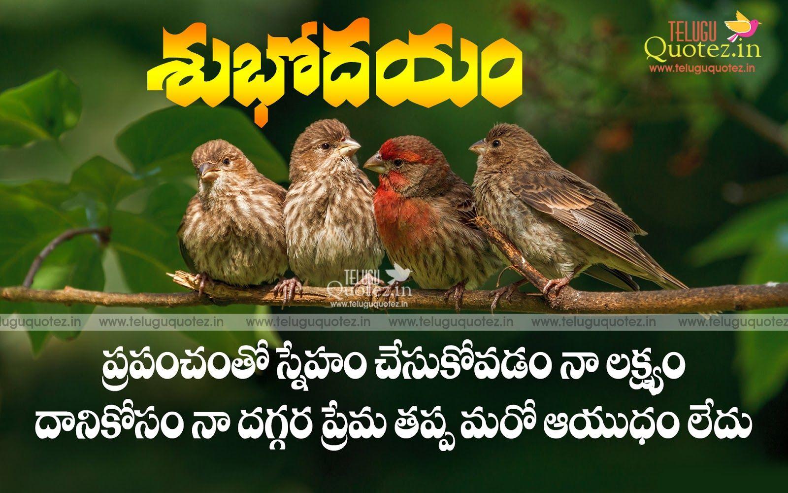 Good Morning Life Quotes In Telugu Quotes Images Free Teluguquotez