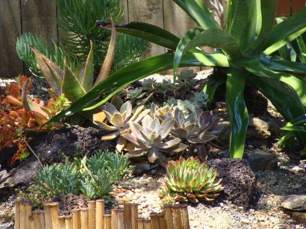 Xeristyle Exterior Design   Fullerton, CA, United States. Costa Mesa 2011