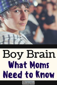 Photo of Boy Brain: What Moms Need to Know – The Hmmmschooling Mom