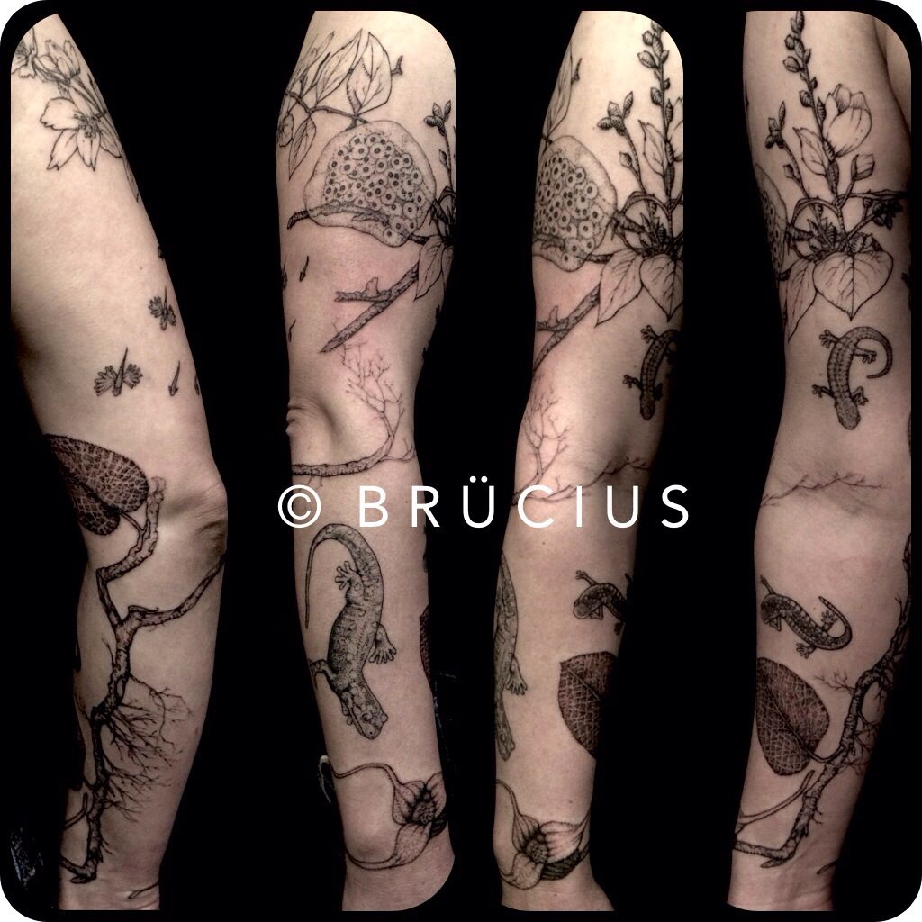 Brucius Tattoo Sf Engraving Stippling Ginger Salamander Branch Ginger Flower Scientific Fauna Flora Li Tattoos Black And Blue Tattoo Blue Tattoo