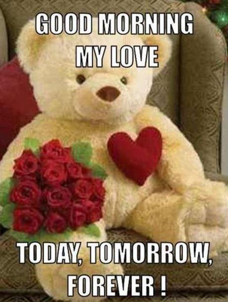 2680770ae3739a1dfd06d58ce1b98139 love good morning meme for mobile good morning images