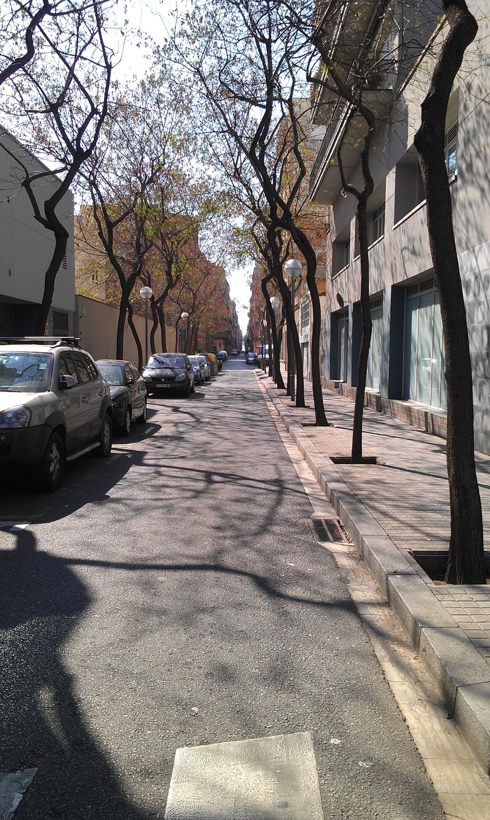 Springtime in Barceloneta