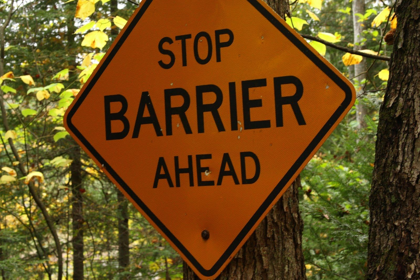 Our Blog Article On The Formidible Barriers Homeless Youth