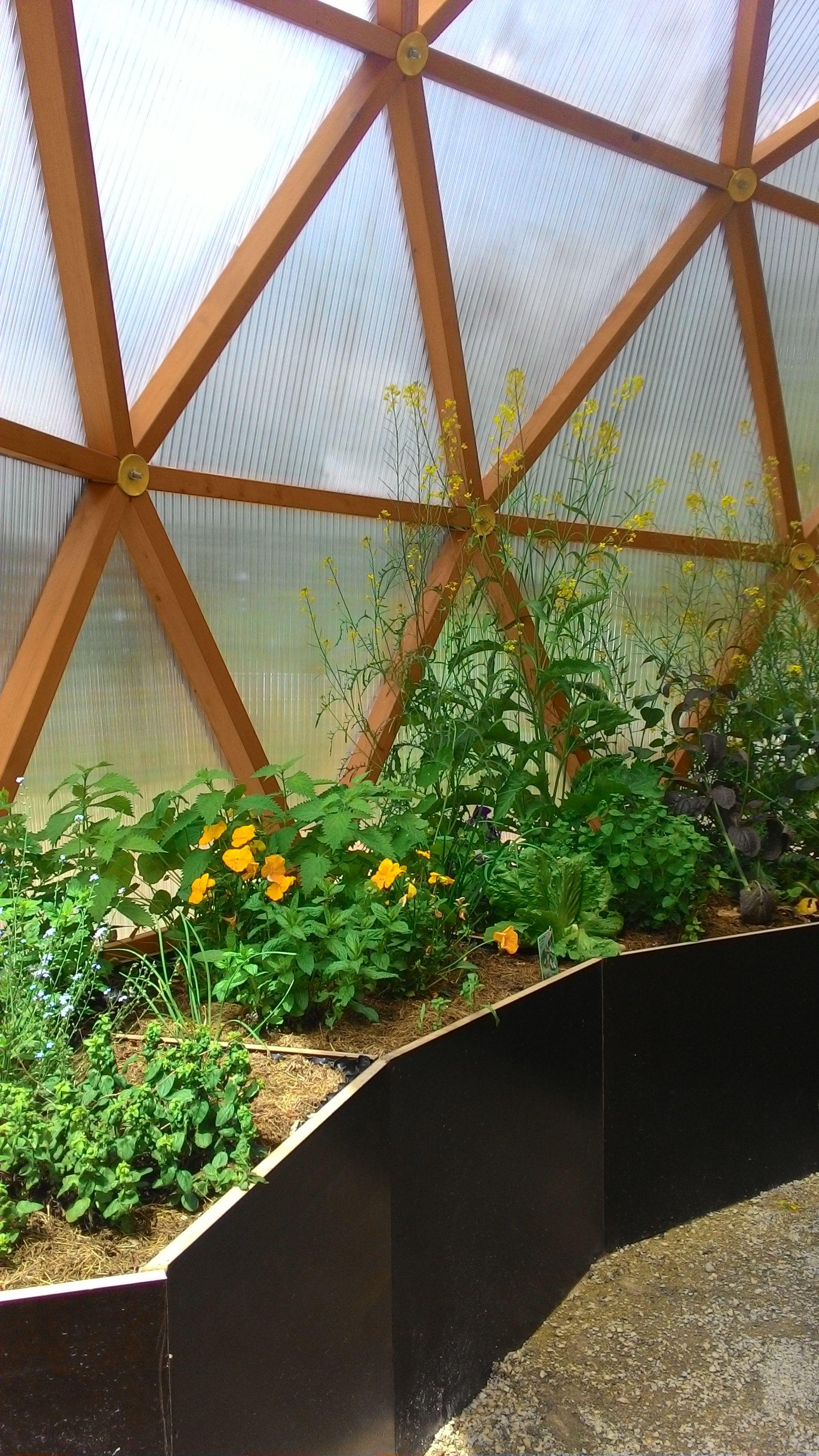 Green Dome Es Grünt So Grün Gewächshaus Geodesic Homes