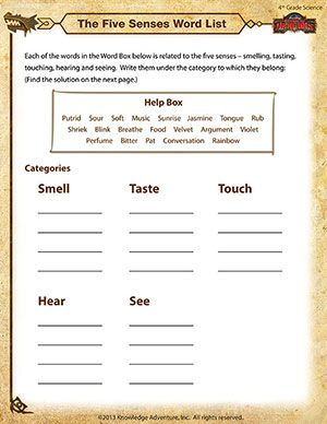 4th Grade Science worksheets | The Five Senses Word List ...