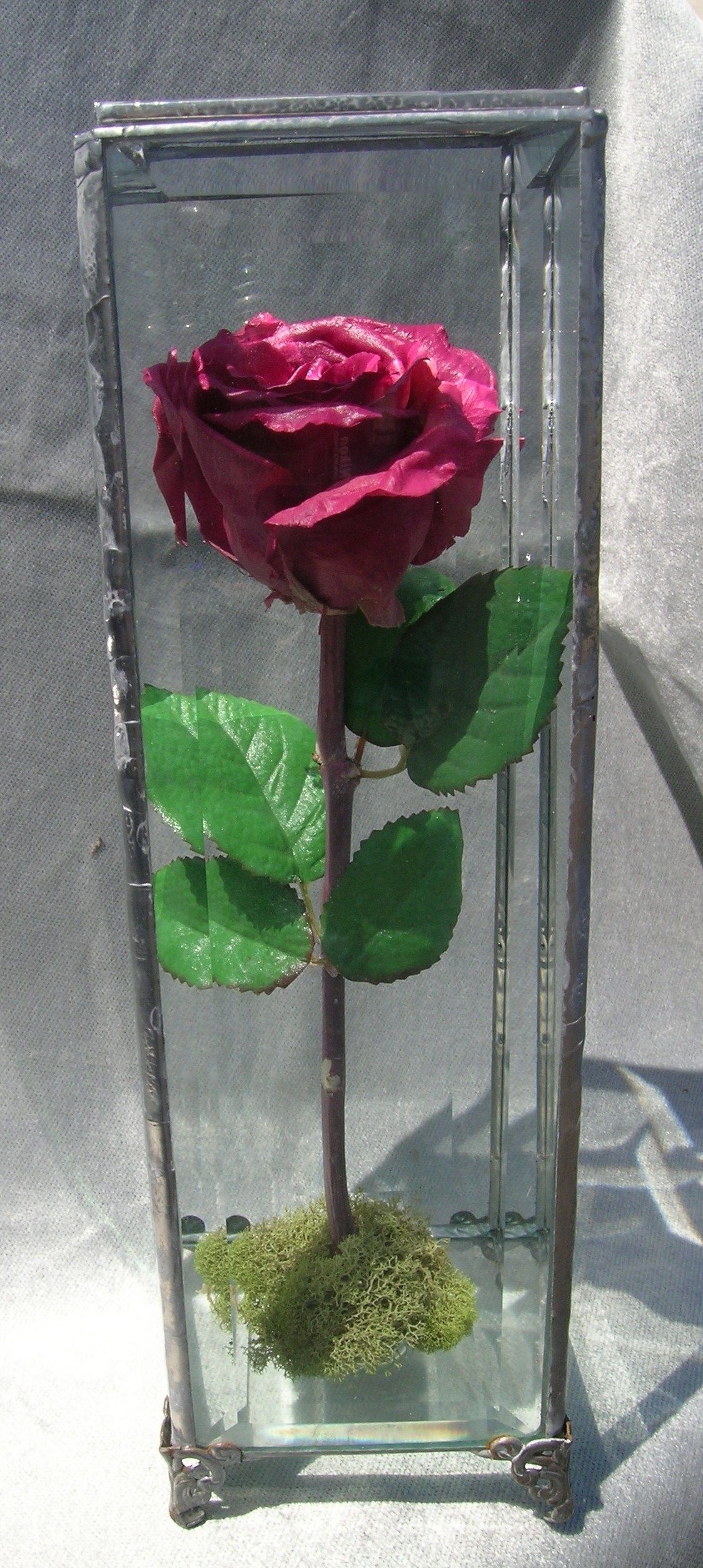 Preserved wedding flowers in a glass box. Single rose in
