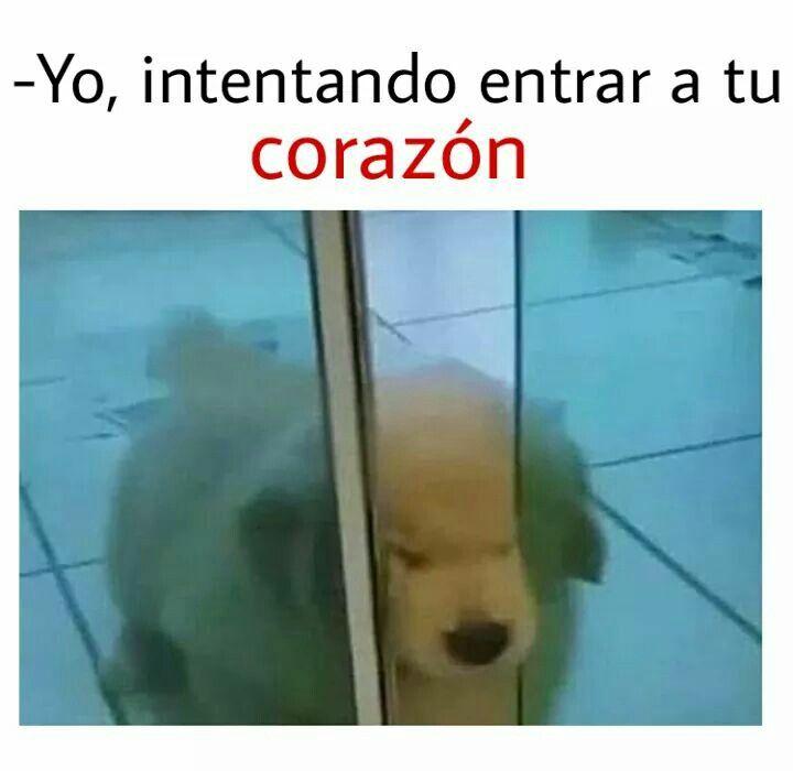 Pin De Rosangel En Memes Memes Divertidos Memes Espanol Graciosos Meme Gracioso