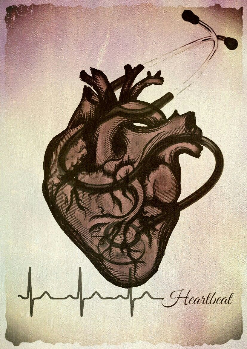 Heartbeat | Corazón | Pinterest | Gabi, El corazon y Medicina