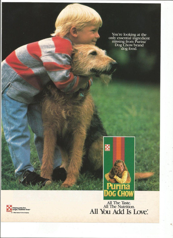 1989 Advertisement Purina Dog Chow Boy And His Dog Schnauzer Pet