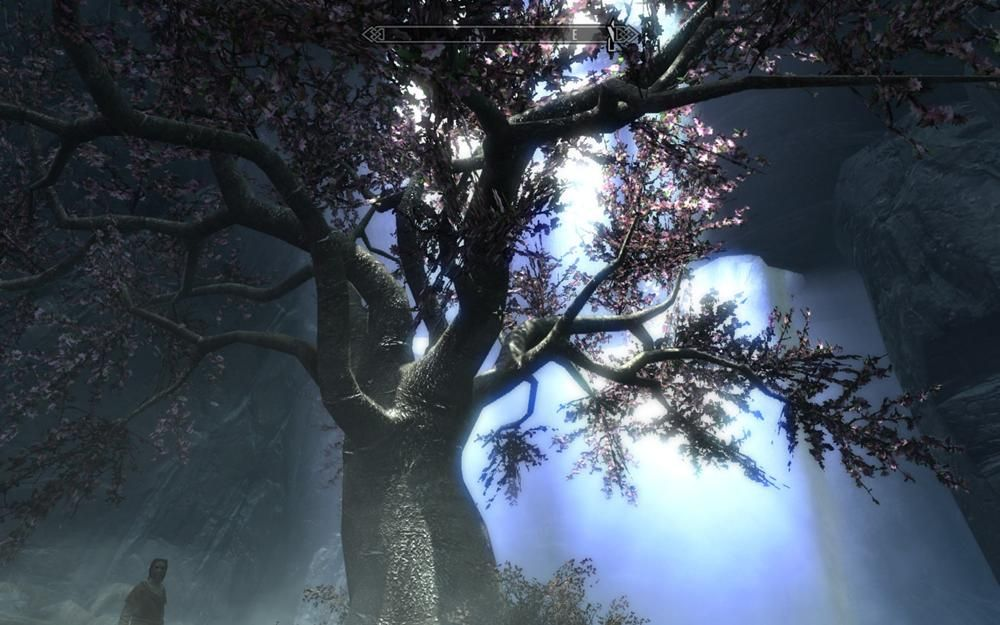 Eldergleam Tree - The Elder Scrolls Wiki