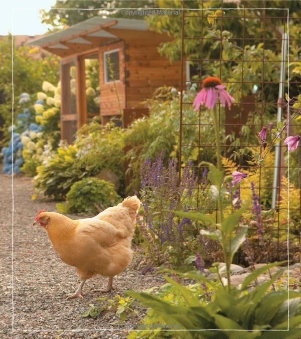 26852cab1d065d5383c1d938f3844f9c - Free Range Chicken Gardens Jessi Bloom
