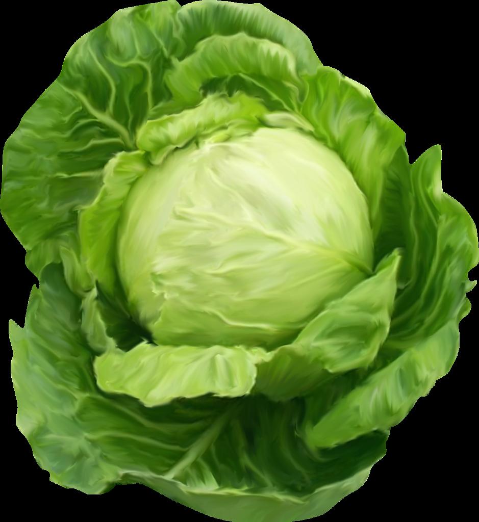 Поздравление, овощи картинки для детей на прозрачном фоне