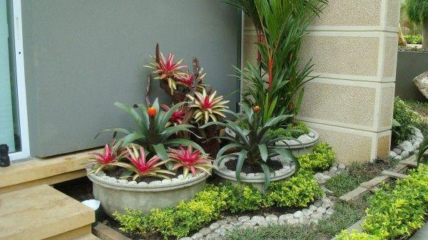 Plantas De Diseno