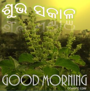 Good Morning Messages In Odia Odia Good Morning Morning Messages