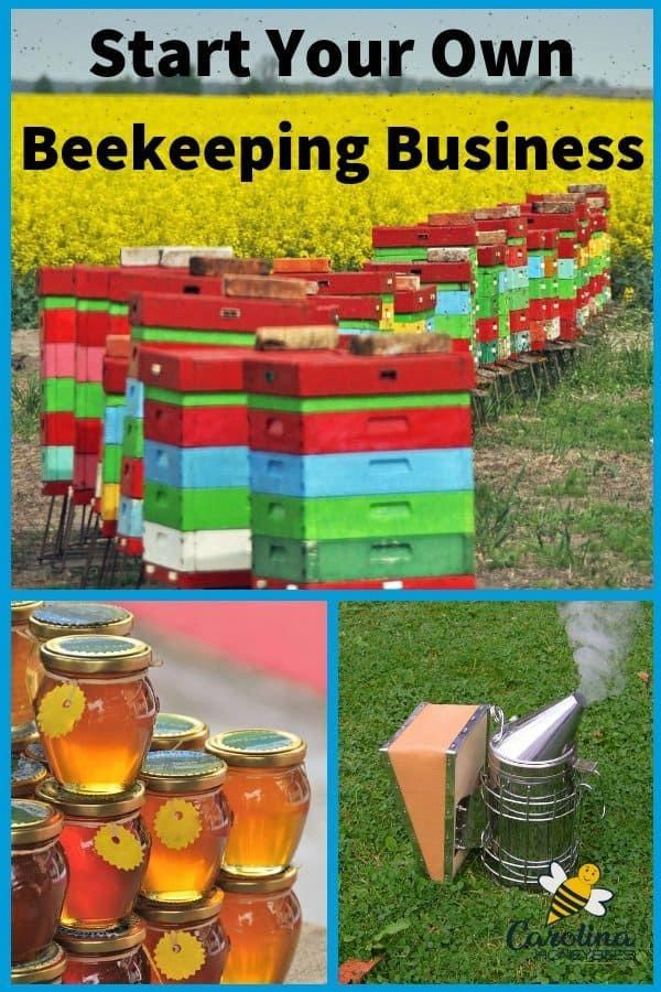 How to start a beekeeping business of your own. You do not ...