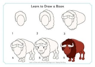 Learn to Draw a Bison