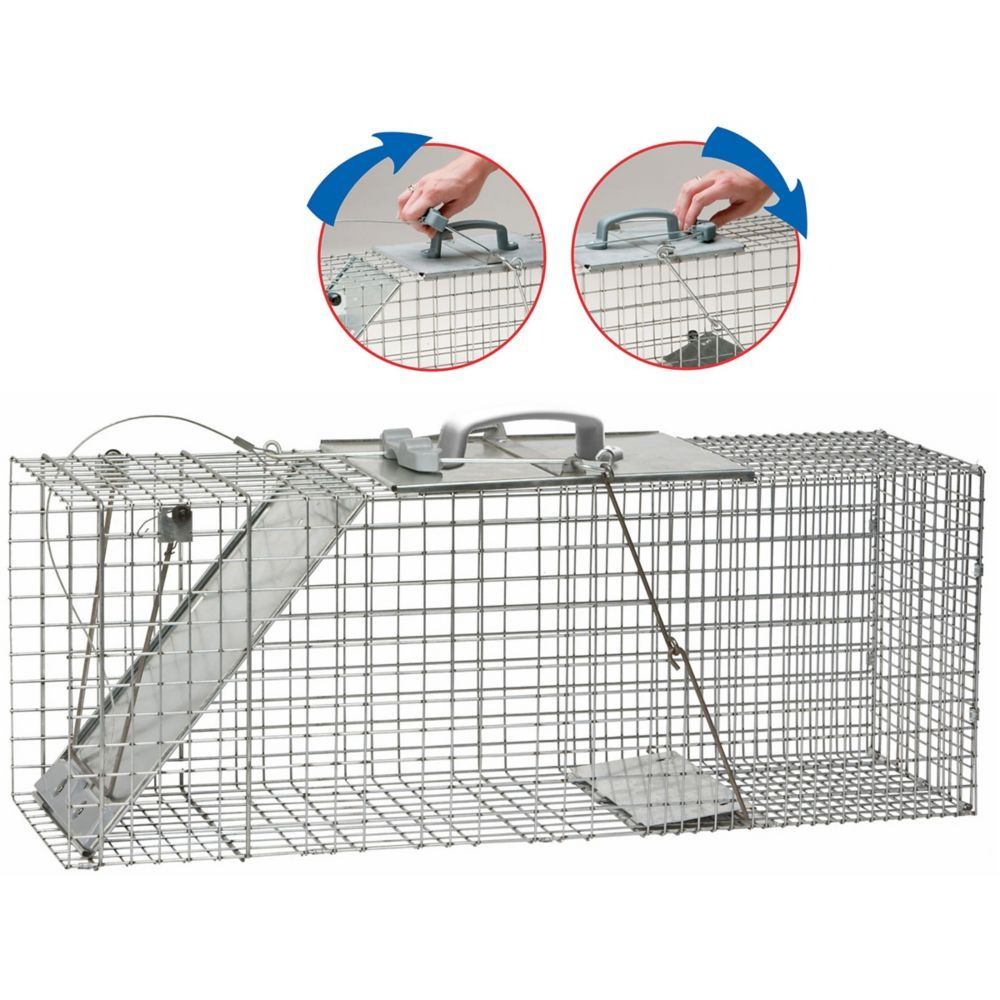 Large Easy Set Animal Cage Trap Animal traps, Live