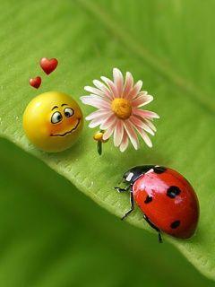 For My Ladybug Smile...:)