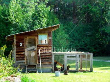 Google Image Result for http://i.istockimg.com/file_thumbview_approve/844882/2/stock-photo-844882-chicken-coop.jpg