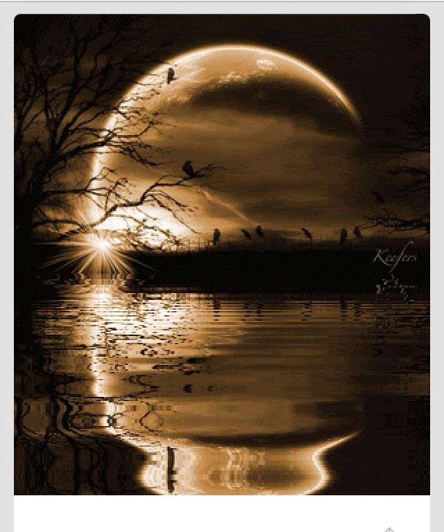 Картинки луна живая